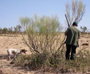 Accesorios para el sector de la caza