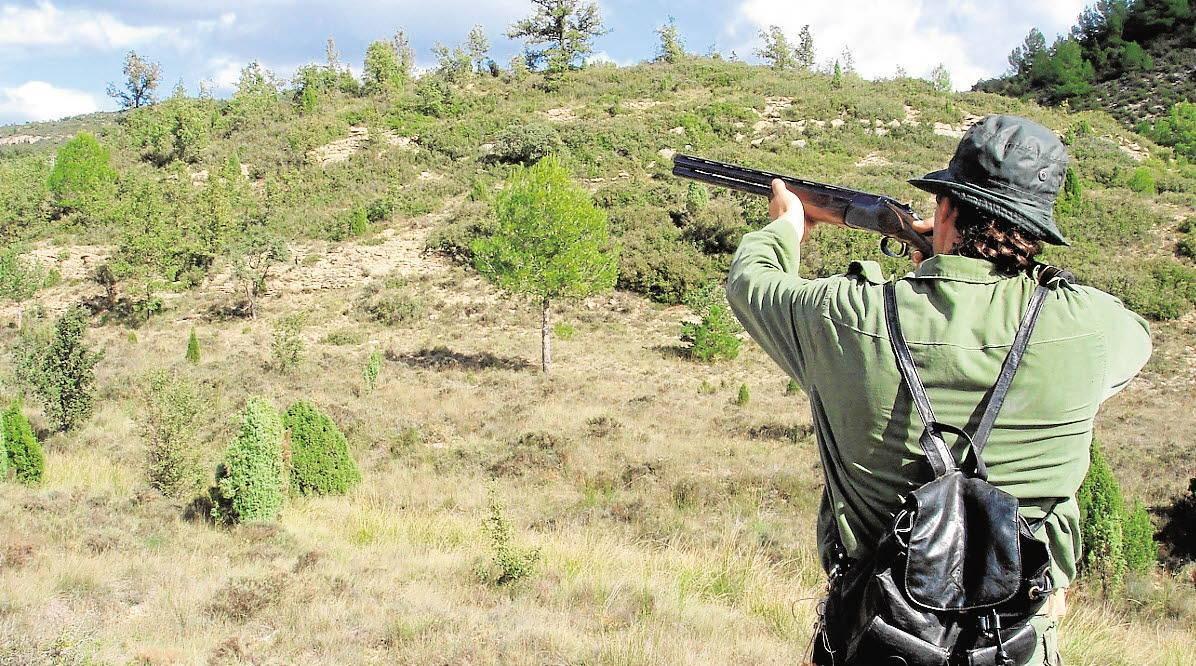Comprar armas de caza al mejor precio