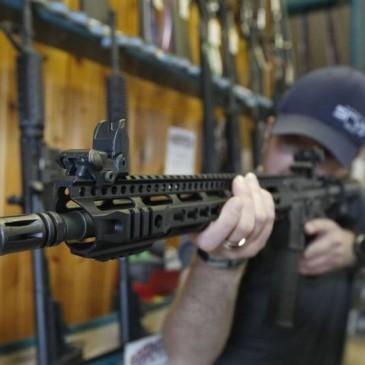 Comprar rifles