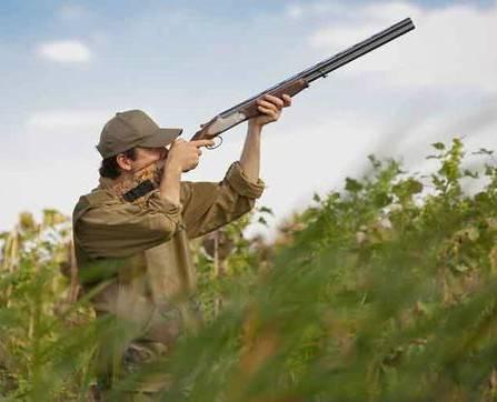 Precio armas de caza