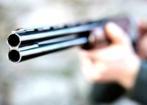 Precio armas de caza - Los mejores precios en rifles y escopetas