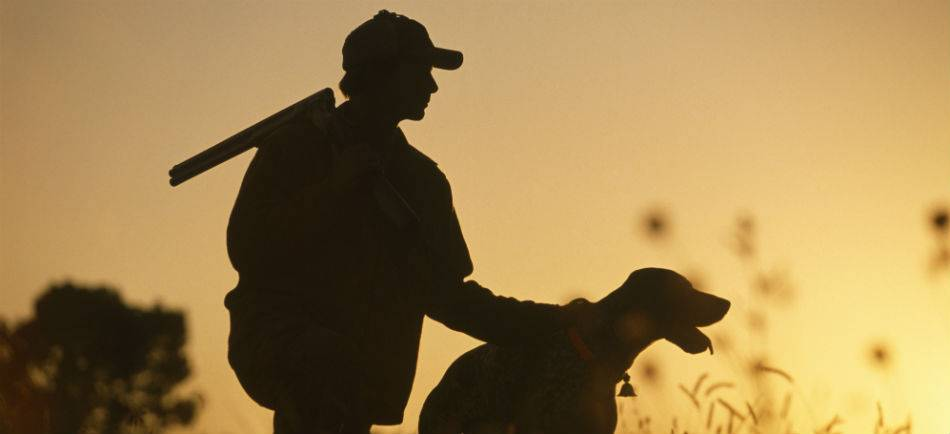Precio armas de caza - Venta a nivel nacional
