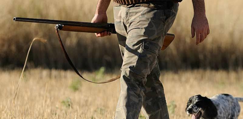 Precio armas de caza - Venta de rifles y escopetas