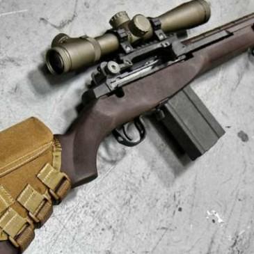 Precio de rifles