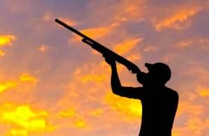 Rifles y escopetas - Venta de armas para la caza