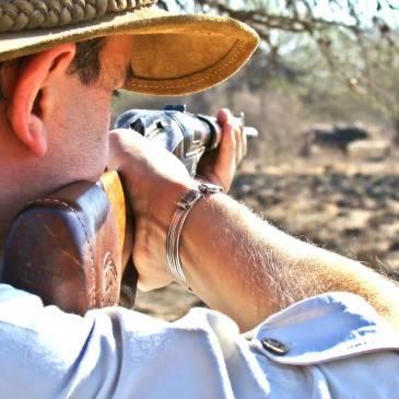 Rifles y escopetas calidad