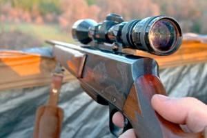 Rifles y escopetas de alta calidad - Cazador con un rifle