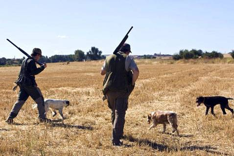 Rifles y escopetas de gran calidad