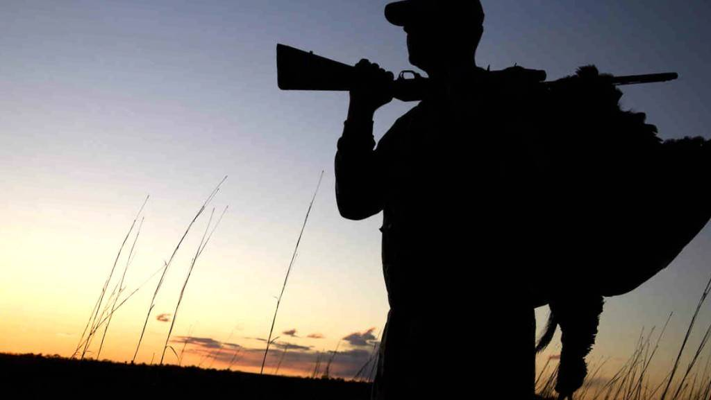 Tienda de accesorios para caza - Empresa profesional de venta de productos para caza