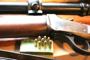 Tienda de armas para caza mayor - Venta a nivel nacional