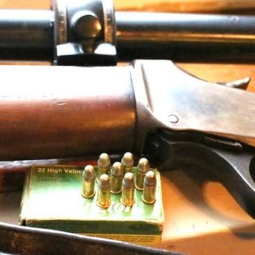 Tienda de armas para caza mayor