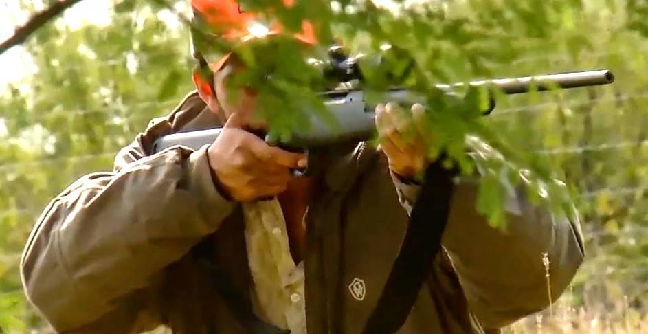 Venta de armas para cazadores - Armas para zacadores en España