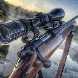 Venta de rifles y escopetas de calidad