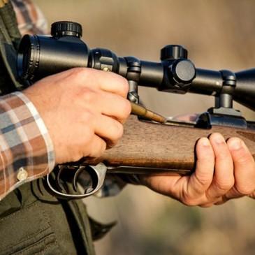 Venta online de rifles y escopetas